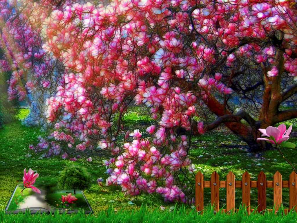 Fiori Del Mese Di Giugno tra fiaba e leggenda (mese di novembre): la magnolia dai